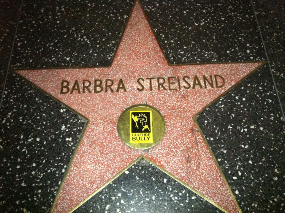 Culture Bully Barbra Streisand