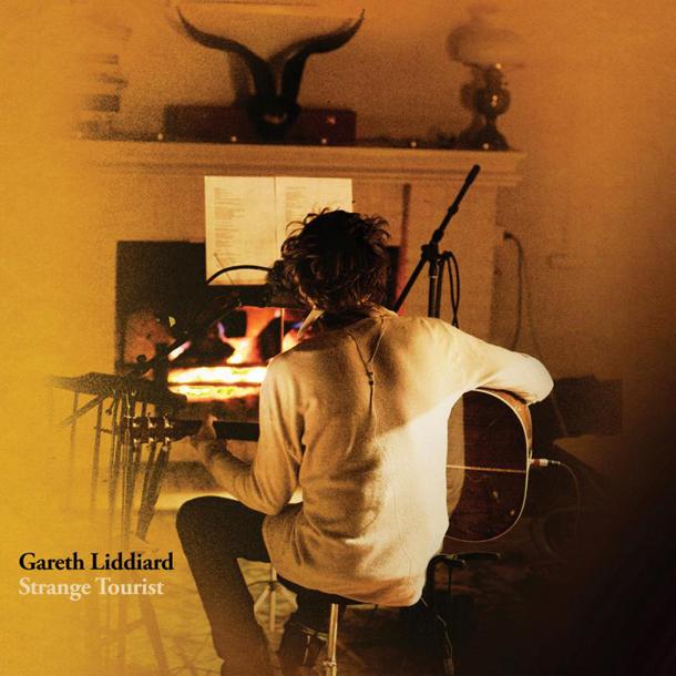 Gareth Liddiard Strange Tourist Interview
