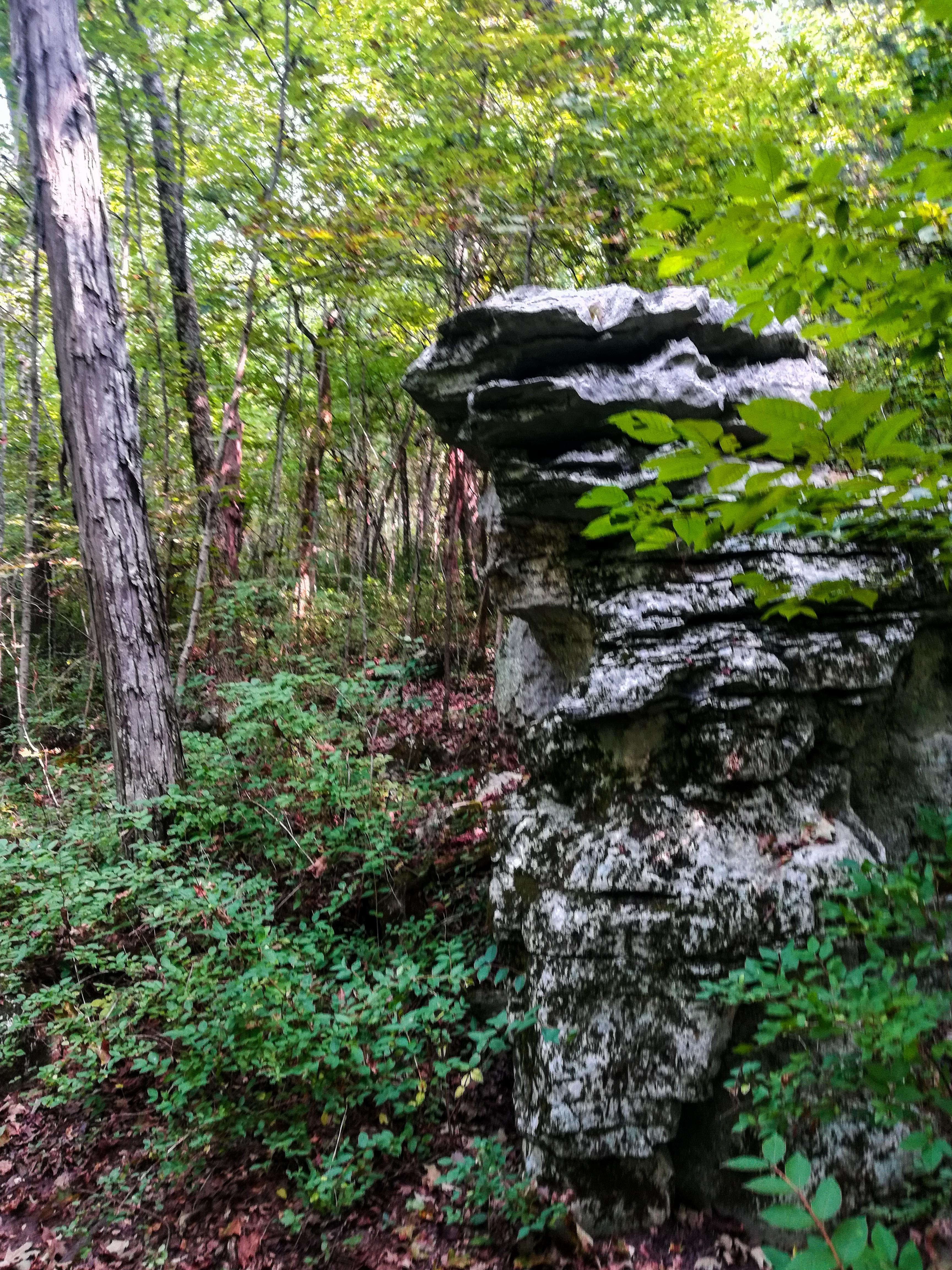 Monte Sano Nature Preserve Alms House Trail